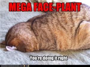 Mega Face-Plant
