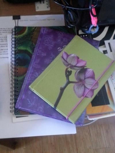 WIW CPAGE Journals