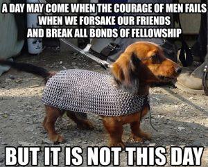 LOTR dachshund
